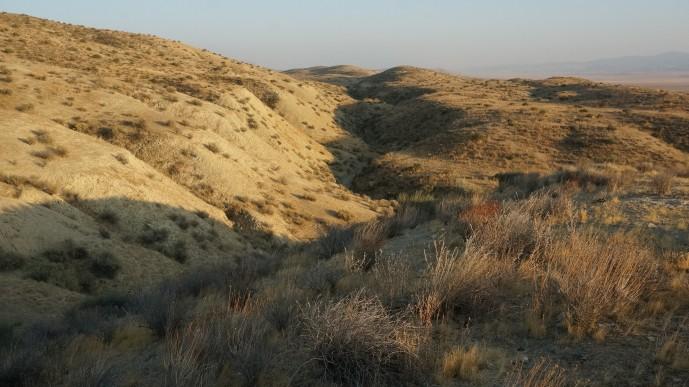 사진 중앙 구불구불한 계곡 아래로 샌 안드레아스 단층이 지나간다. 북미판과 태평양 판이 충돌하고 미끄러지면서 생긴 단층으로 길이가 1200km가 넘는 초 거대 단층이다. - 캘리포니아 카리조평원=오가희 기자 solea@donga.com 제공